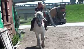 La stalliera adora i cavalli duri